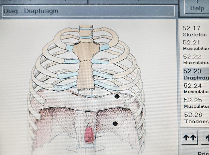 __Diaphragm __IMG_20200613_124210-min