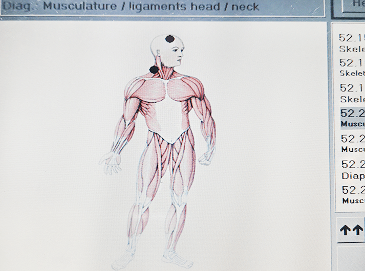 __Musculature - ligaments head - neck __IMG_20200613_124202-min