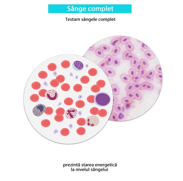 Testare sânge complet Biorezonanta-min