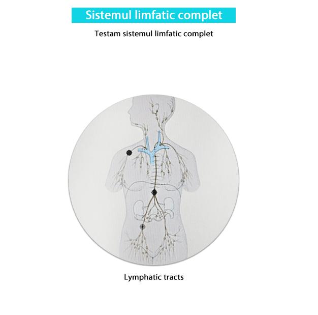 Testare sistemul limfatic complet-min