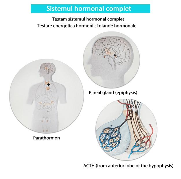 Testare - Sistemul hormonal complet biorezonanta-min