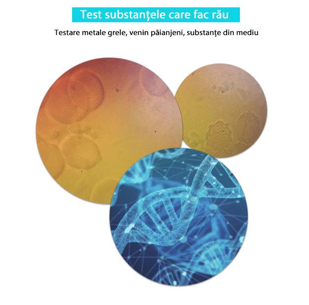 Substantele care fac rau Biorezonanta Testare metale grele, venin păianjeni, substanțe din mediu(1)