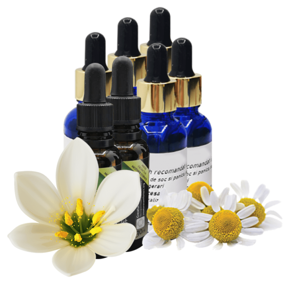 Remedii florale Blenduri personalizate facute de voi